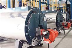 燃气热水锅炉(图1)
